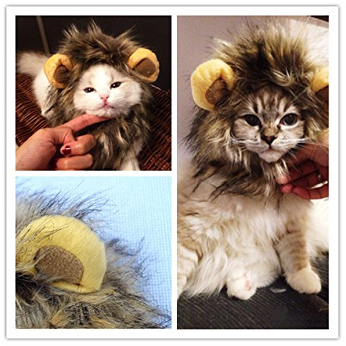 Dentist Lion Halloween Costume (Alotm Lion Mane Wig for Cat & Dog Costume - Pet Adjustable Washable Comfortable Fancy Lion Hair - Dog Clothes Dress for Halloween Christmas Easter Festival Party Activity)