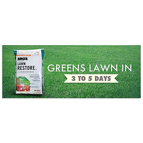 Safer Brand Ringer Lawn Restore, Lawn Fertilizer - 25 Pounds