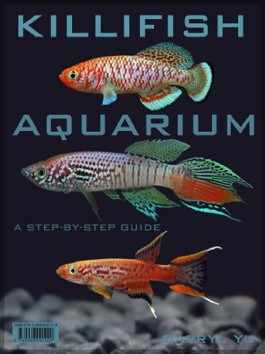 Killifish Aquarium, A Step-By-Step Guide