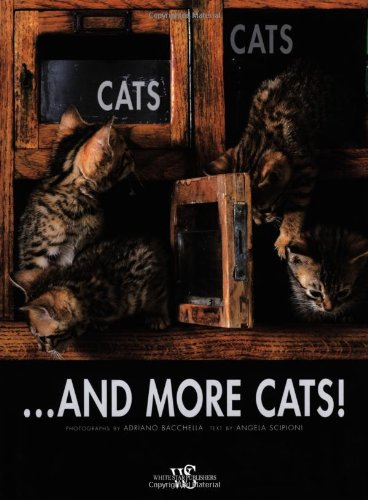 Cats, Cats...and more Cats! (Pets)