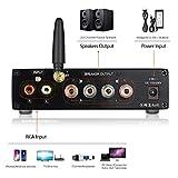 Douk Audio G3 PRO Bluetooth 5.0 Power Amp