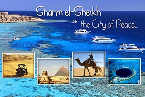 CFL EGYPT SHARM EL-SHEIKH MAGNETICA CALAMITA FRIGO FRIDGE MAGNET