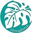 nc-smile ハワイアンステッカー モンステラ Monstera シーグリーン