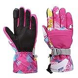 Ski Gloves, Rhino Valley Winter Waterproof Warm Snow Telefingers Gloves for Men, Women, Boys, Girls, Kids, Fit Outdoor Activities, Skiing, Skating, Snowboarding