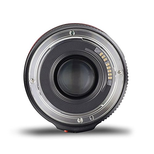 Yongnuo YN50MM F1.8 II AF/MF 0.35M Focus Distance Standard Prime Lens for Canon DSLR Camera by Yongnuo (Image #2)