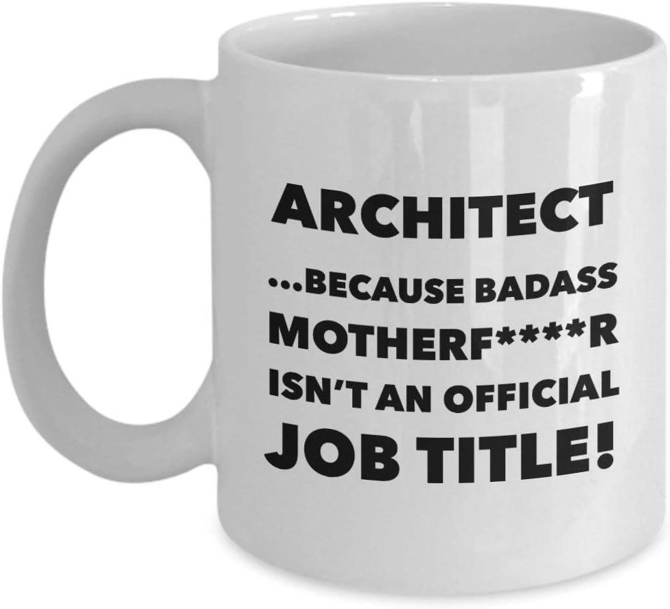 Taza de café divertida para arquitecto profesional, idea de regalo para arquitecto profesional, taza de té de cerámica de 11 oz
