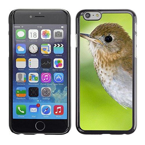 "Premio Sottile Slim Cassa Custodia Case Cover Shell // V00003963 annapolis vallée nova // Apple iPhone 6 6S 6G PLUS 5.5"""