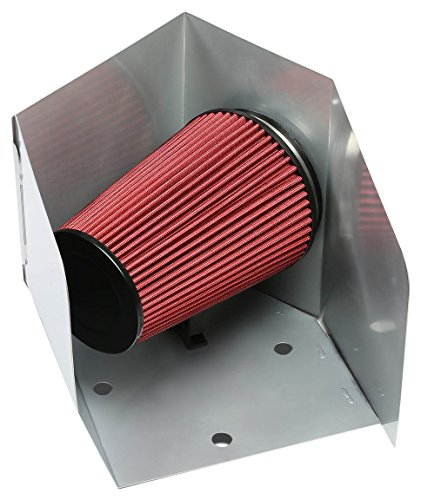 (DNAMotoring AIP-2-HS-RAM94L6-SLSL Cold Air Intake System and Heat)