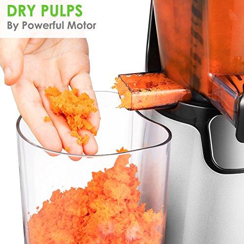 Juicer Slow Masticating Juicer Extractor, 3 Strainers for Frozen Desserts, High Nutrient Fruit ...