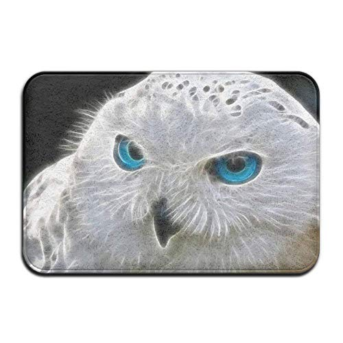 3D Snow Owl Home Door Mat Super Absorbent Non Slip Front Flo