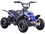 Mini Monster 24v 250w ATV Blue