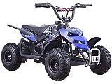 Mini Monster 24v 250w ATV Blue