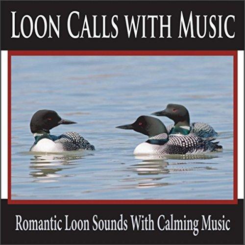 Amazon.com: Lake Loons At Dusk: Robbins Island Music Group