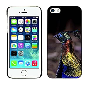 FlareStar Colour Printing Peacock Bird Vibrant Blue Spring Gold cáscara Funda Case Caso de plástico para Apple iPhone 5 / iPhone 5S