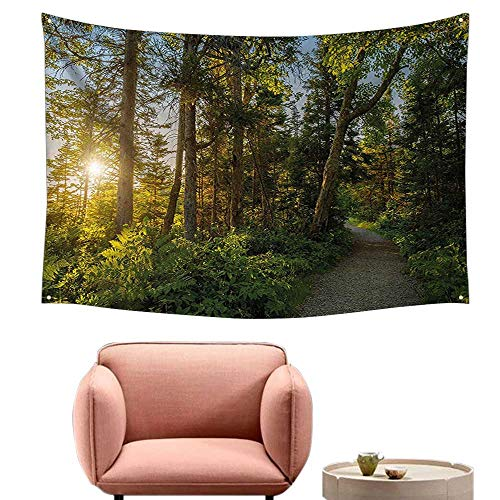 alsohome Wall Decor Tapestry Wall Tapestry for Bedroom Park in Cape Breton Highlands Canada Forest Path Trees Tranquility Photo Blue Green 84