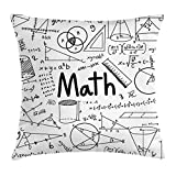 Ambesonne Mathematics Classroom Decor Throw Pillow Cushion Cover, Hand Written Math Text and Icons Equations Geometrical Shapes, Decorative Square Accent Pillow Case, 16 X 16 Inches, Black White