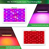 1000w LED Grow Light with Bloom and Veg