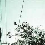 MACHIKUTABIRETE ASA GA KURU -  CREEPHYP, Audio CD
