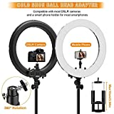 """Ring Light Kit:18"""" 48cm Outer 55W 5500K Dimmable LED Ring Light, Light Stand, Carrying Bag for Camera,Smartphone,YouTube,Self-Portrait Shooting"""