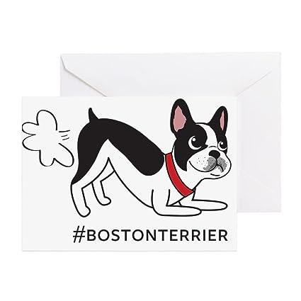Amazon Cafepress Boston Terrier Fart Problems Greeting