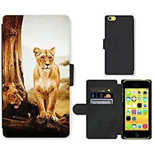 Hot Style Cell Phone Card Slot PU Leather Wallet Case // M00111397 Africa Animal Big Carnivore Cat // Apple iPhone 5C