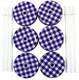 Metal Mason Jar Lids and Plastic Mason Jar Straws Set, (6 Pack), Purple & White Plaid Lids with White Solid Straws
