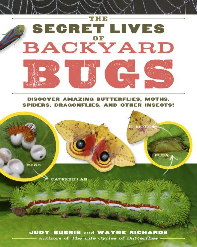 The Secret Lives of Backyard Bugs: Discover Amazing Butterflies, Moths, Spiders, Dragonflies, and Other Insects! ()