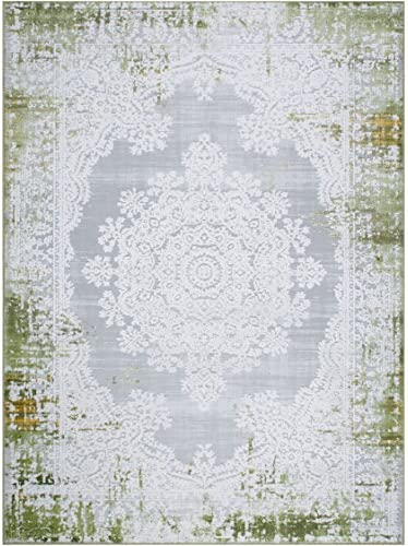 Home Dynamix Palmyra Rene Area Rug 22 x32 , Distressed Green