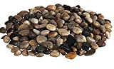 Jm Bamboo Multicolor Washed Decorative Small Stones Rocks 2 Lbs Bag