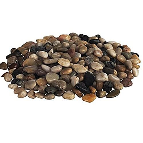 Cheap JM BAMBOO Multicolor Washed Decorative Small Stones Rocks 2 Lbs Bag hot sale