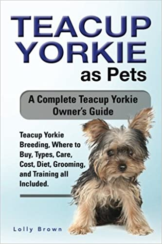 Teacup Yorkie As Pets Teacup Yorkie Breeding Where To Buy Types