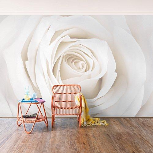 pintado d fotomurales murales pared papel para pared foto mural pared barato decorativo anterior siguiente