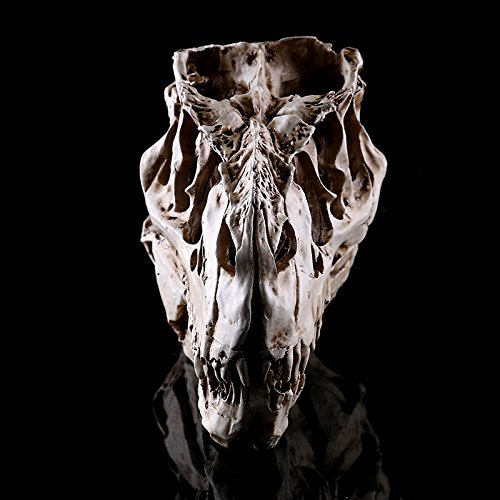 Lannmart Crafts Dinosaur Tooth Skull Fossil Teaching Skeleton Model Halloween Home Office Halloween Decoration -