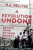 A Revolution Undone: Egypt's Road Beyond Revolt