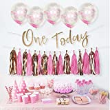 Monkey Home 22pcs Tissue Paper Tassel DIY Party Garland Decor, One Today Sparkly Gold Banner, Pink Confetti Balloons for All Events & Occasions