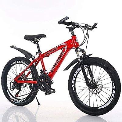 Camino de la bicicleta de la bicicleta duro cola variable bicicleta 26/24/22/20 pulgadas Estudiante de educación superior velocidad de la bici de doble disco de freno de la bicicleta BMX bike: Amazon.es: