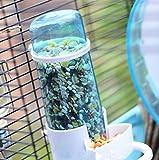Old Tjikko Automatic Pet Feeder Waterer,Bird
