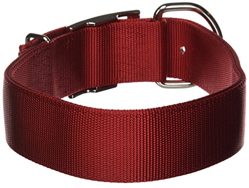 Hamilton Deluxe Double Thick Nylon Dog Collar, 1-3/4 by 26-Inch, -