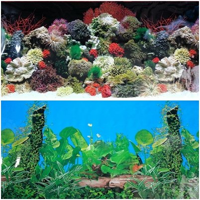 48l-x-20h-double-sided-aquarium-terrarium-black-background-decorations