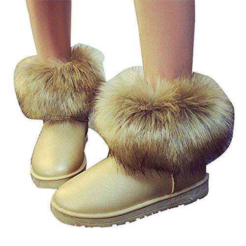 Stivaletti Inverno da Champagne Piatto Caloroso Neve Neve Donna Boots Inverno Pelliccia Allineato da Donne Hibote Stivali Scarpe CTwzPP