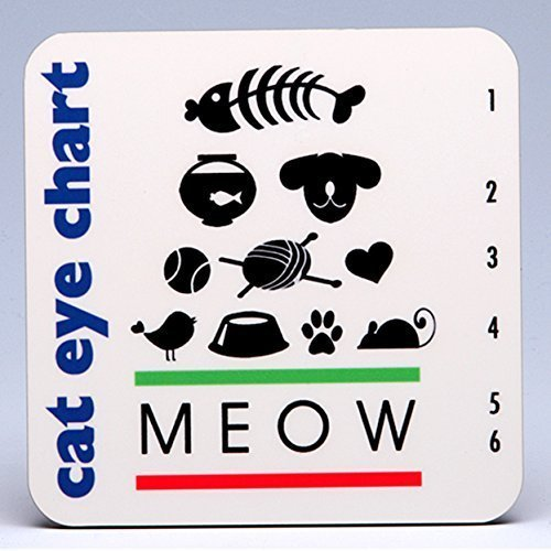 - Whimsical Cat Eye Chart Harboard Coasters ~ boxed set of 4 ~ PURR-fect for cat and pet lovers