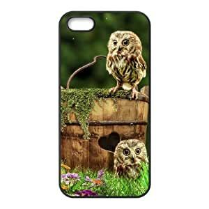 Cool Painting Owl Use Your Own Image Phone Case for Iphone 5,5S,customized case cover case527252
