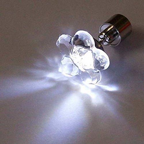 (Visky ® LED Earrings Flower Shape-White Light--2 Pair)