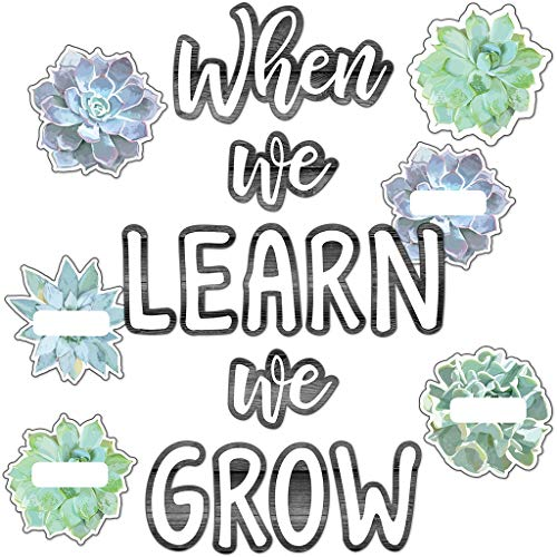 Simply Stylish When We Learn We Grow Bulletin Board ()