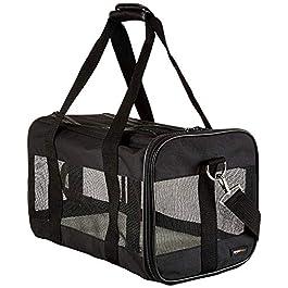 AmazonBasics Soft-Sided Mesh Pet Travel Carrier