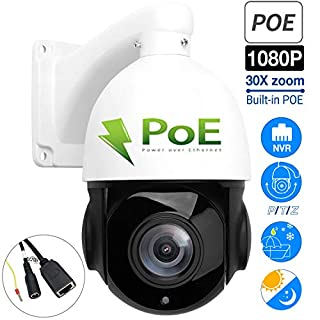 Outdoor PTZ Speed Dome IP Security Camera, Built-in POE Pan Tilt 30X Zoom 1080P 2.0 MP IR Night Version CMOS AUTO 4.5''