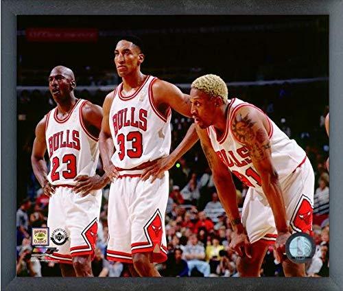 Michael Jordan, Scottie Pippen, Dennis Rodman Chicago Bulls NBA Photo (Size: 12