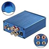 2 Channel Stereo Audio Class D Digital Amplifier Mini Hi-Fi Professional Amp for Home Speakers 50W x 2 - V1.0B