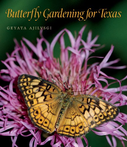 Thing need consider when find butterfly garden texas?