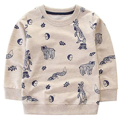 Little Boys Cotton Cute Bear and Fox Crew Neck Long Sleeve Sweatshirt Tops (Bear, 6T)